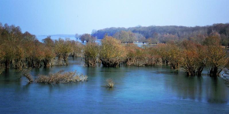 cote maximale (lac de la Forêt d'Orient Aube)