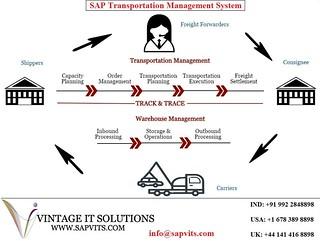 SAP TM Online Training | SAPVITS is the best SAP TM Online T