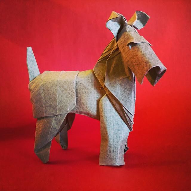 Fox Terrier by Roman Diaz