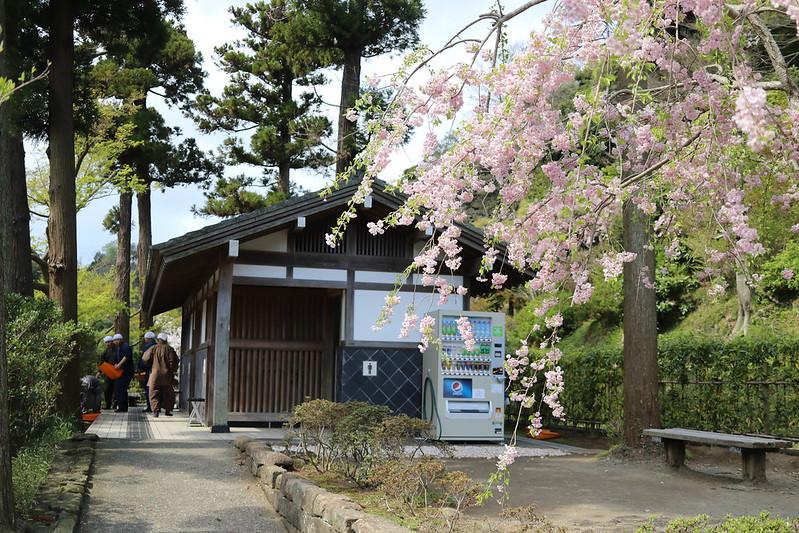 20170415_鎌倉アルプス_0107.jpg