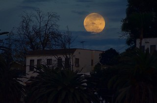 Superblueblood Moon Rising
