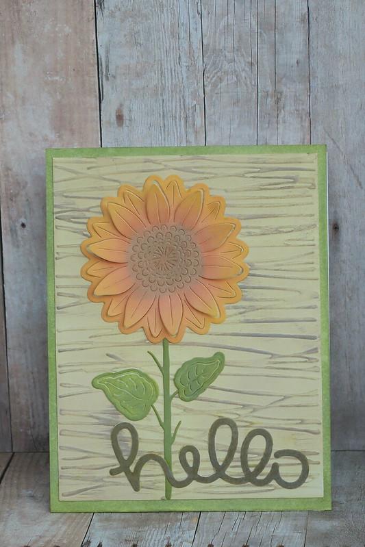 Sunflower Hello