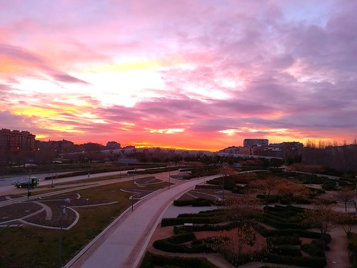 amanecer sunrisecolors sunrise oneday madriz madrid puente huaweip8 huawei jothagacia parque park 2018 febrero february invierno winter