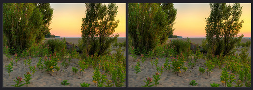 jeff® j3ffr3y copyright©byjeffreytaipale headlandsbeach lakeerie ohio ohiopark sand trees sky sunset