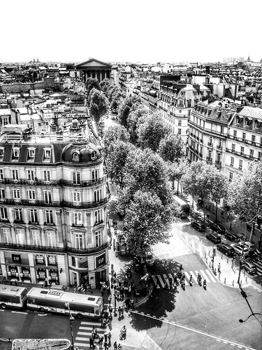 building architecture france paris urban cityscape city tree monochrome