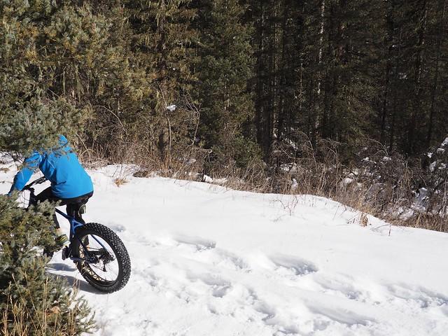 水, 2018-01-17 14:18 - Bear Creek Trail