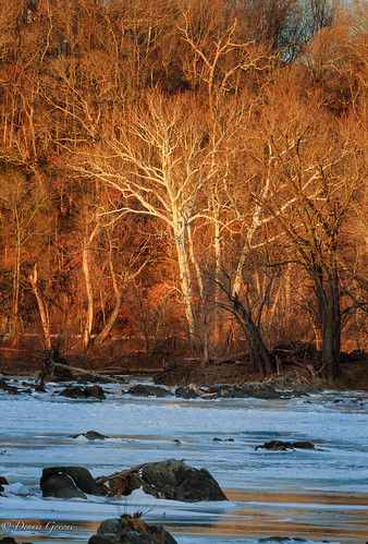 virginia background ice landscape potomacriver river snow sunset trees water winter greatfalls unitedstates us