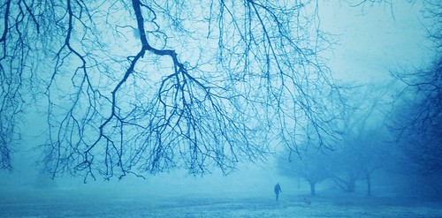 winter park cyan blue walking android mobile samsung philadelphia philly outdoors dog trees branches panorama foggy snow grainy fairmount toned fairmountpark