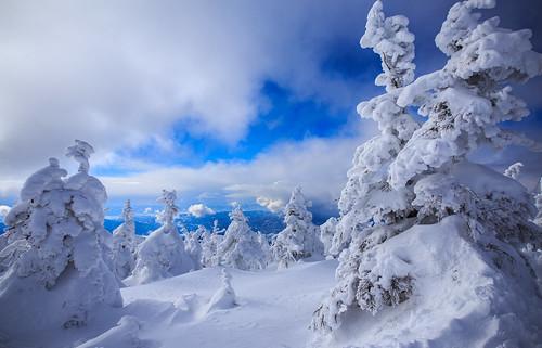 yamagatashi yamagataken 日本 山形縣 藏王樹冰 藏王覽車 樹冰 6d ef2470mm 雪怪 雪人 snow talvi winter japan zao