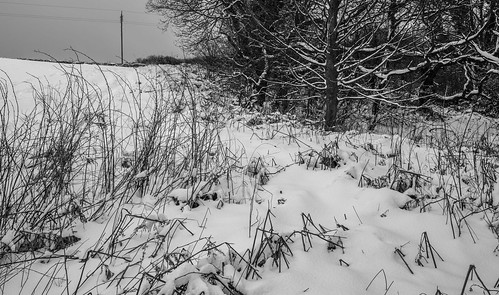 Snowy Sacriston. | by CWhatPhotos