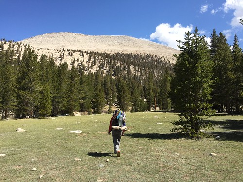 PCT: Day 59