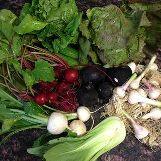 My 1st #NorwoodCSA share!!! | by Kristine Paulus