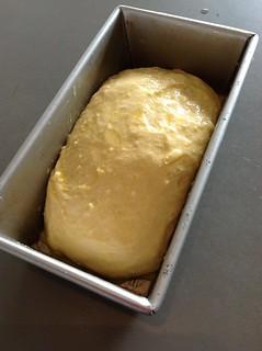 Brioche from Artisan Bread in Five | by *FrogPrincesse*