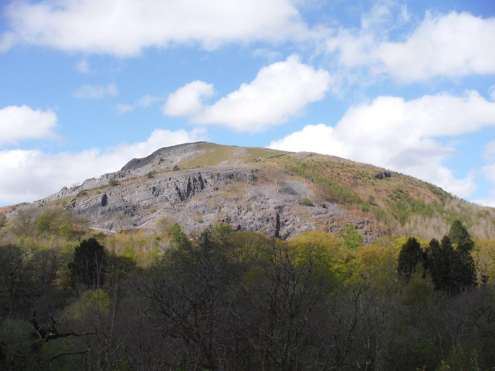 Cribarth, from Rhongyr-uchaf SWC Walk 307 - Fforest Fawr Traverse (Craig y Nos to Llwyn-y-celyn)