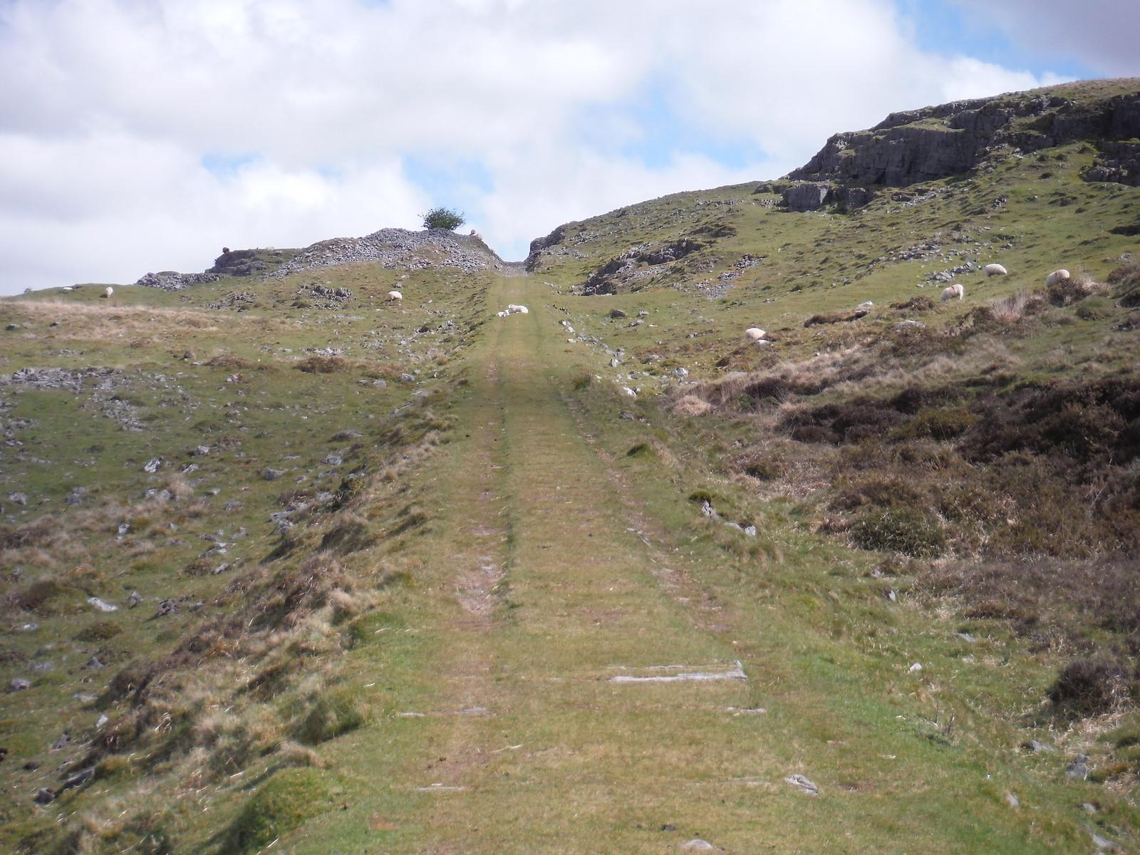 Dismantled Tramway SWC Walk 307 - Fforest Fawr Traverse (Craig y Nos to Llwyn-y-celyn)