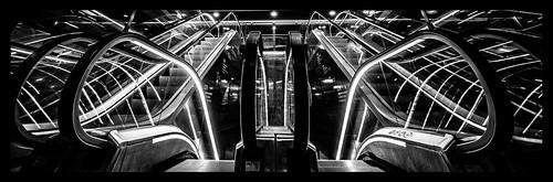 NeonBW   by Yayin Photography