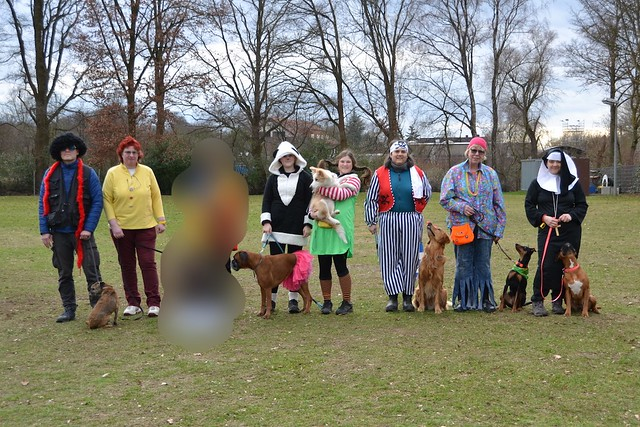 Rosenmontag-Obedience am 27.02.17