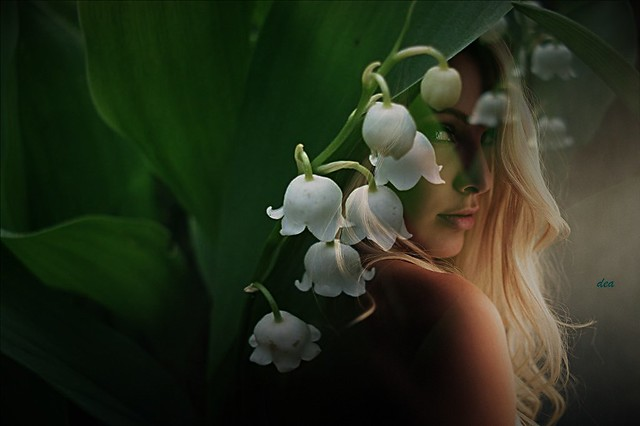perfume of lily of the valley