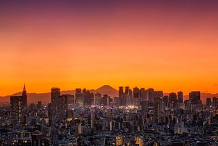 Shinjuku Skyline in Magic Light | by www.tokyoshot.com