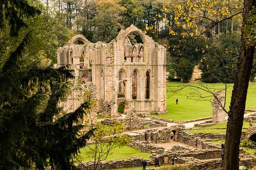 abbey church fountainsabbey studleyroyal ripon yorkshire architecture building ruins heritage tree woods stonework masonry landscape nationaltrust