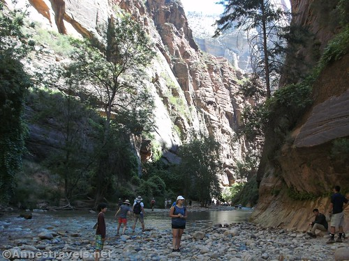 The Zion Narrows, Zion National Park, Utah