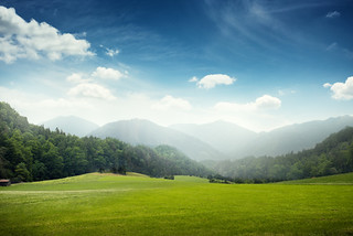 green meadow and hills with forest | by c.collardjacques