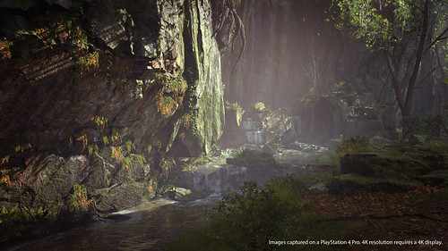 Shadow of the Colossus: Photo Mode | by PlayStation.Blog
