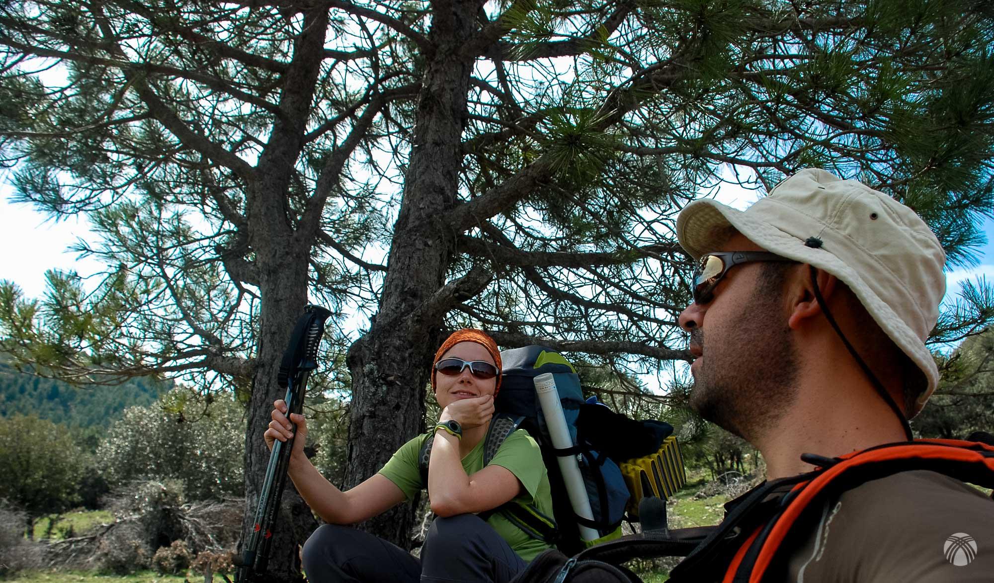 Contándonos secretos a la sombra de los pinos