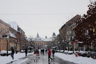 Изборили се са снегом без већих проблема | by gusombor