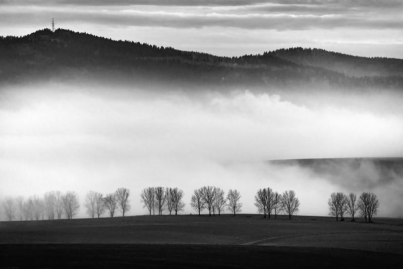 A way through the fog / Cesta hmlou