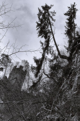 castle and tree above the gorge | by bwstock