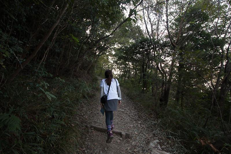 讃岐富士 飯野山 登山