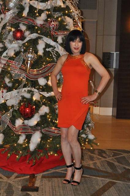 Posing at our DC Trans Ladies Christmas Soiree December 2017