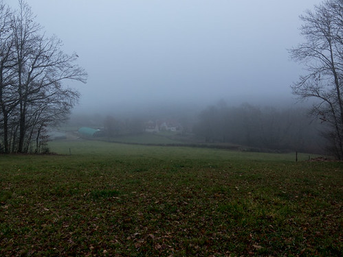 A late foggy Sunday afternoon | by Elise de Korte