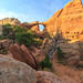 Double O Arch in Arches NP