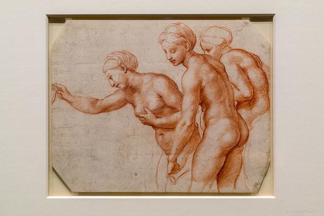 Raffael: Die drei Grazien / The Three Graces, c 1517/18