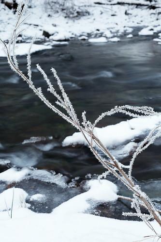 bushkillcreek jacobsburgstatepark hoarfrost creek frozen