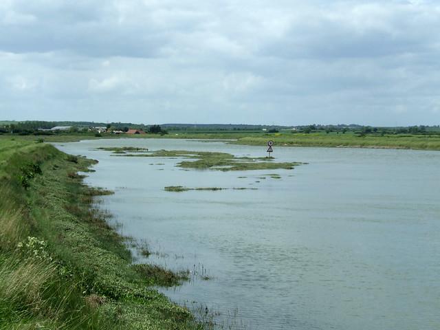Salcott creek