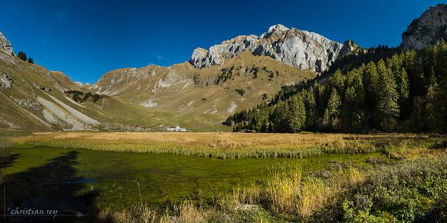 Alpage de Bise (France)