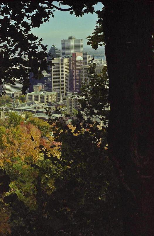 2001 fall mtryl-11