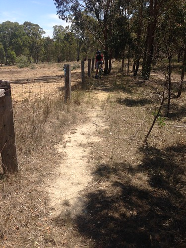 heyfield gippslandplainsrailtrail railtrail path