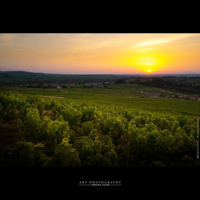 Beaujolais sunrise - Hot day again ! ;)