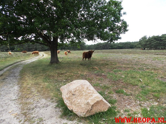 2015-06-27 F.K.C. 't Gooi Wandeltocht 36.4 km (64)