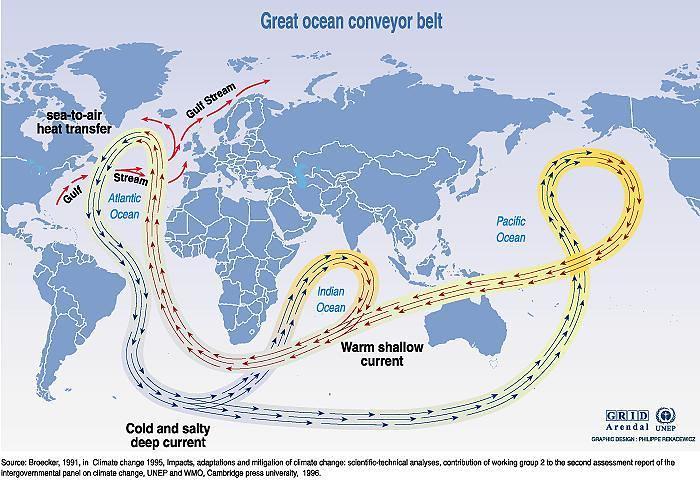 World ocean thermohaline circulation