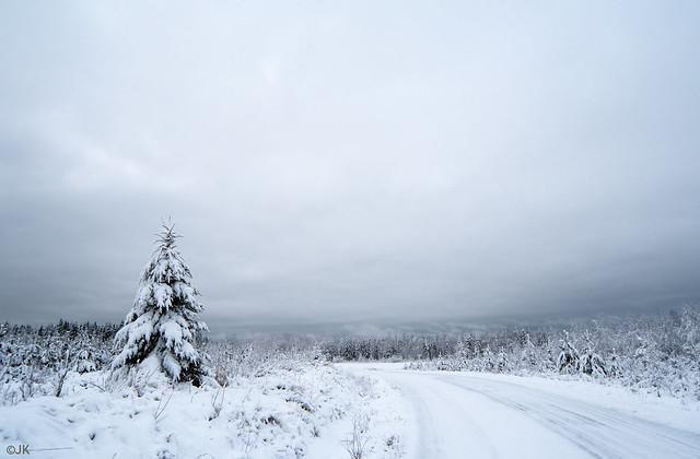 Winter landscape (explored)