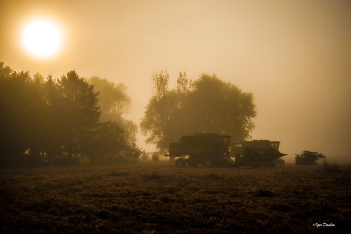 harvest combine harvester fogg morning after done sun field nj colambus nikon d700 igordanilov igor philadelphia flickr grass tree sky mist house sunrise sunday sleep dream 2470mm usa america beautiful country side road nikond700 nikkor24‑70mmf28g google