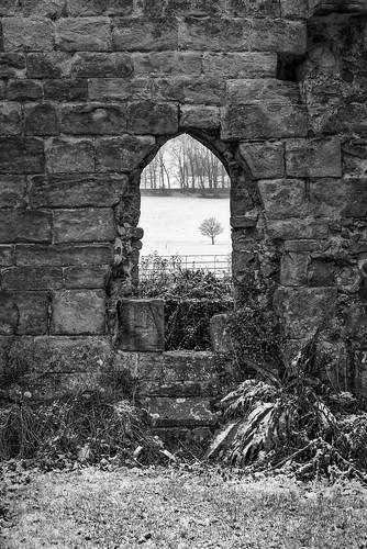 bw jervaulxabbey nikkor2470f28 nikond810 northyorkshire blackandwhite arch stone window architecture calm landscape monochrome outdoor peaceful ruins snow tranquil tree winter silverefexpro
