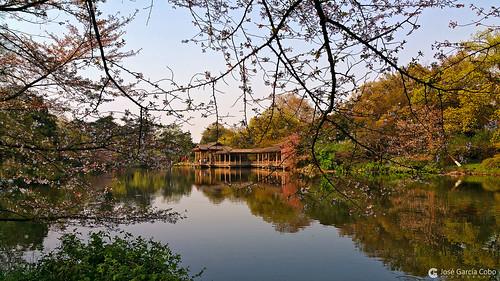 asia china hangzhou color paisajes agua verde naturaleza travel viajes samsung samsungnote4 note4 nikobo joségarcíacobo