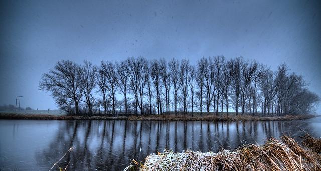 Wintery reflection.
