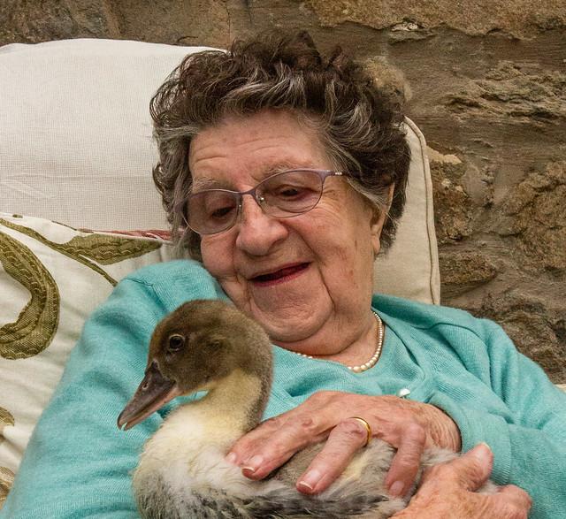 mum&duck